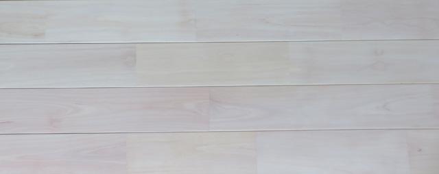 西南桜 オスモカラー ホワイト
